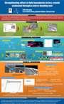 2010MRS_karasawa poster_thumb.jpg